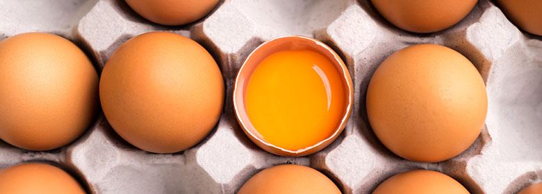 Egg Allergy | Annabel Karmel