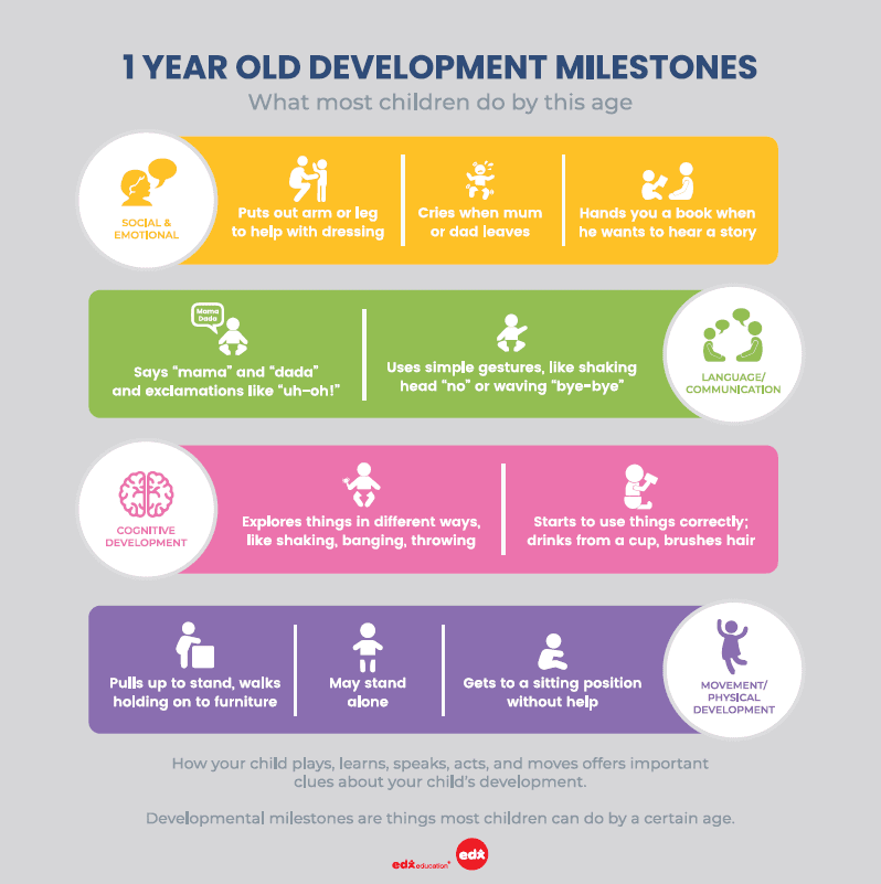 1 year old development milestones by Annabel Karmel